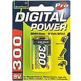 AccuPower AP300-2 - Batería recargable (300 mAh, 9 V)